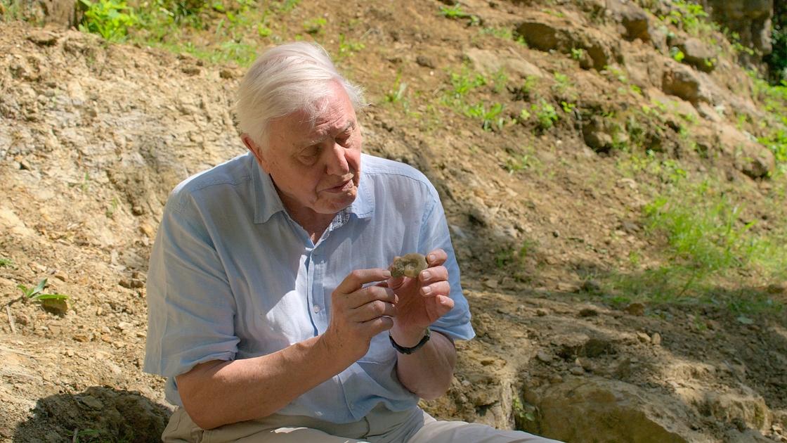 David Attenborough, 94, rikkoi Instagram-ennätyksen - aiemmin ennätys...
